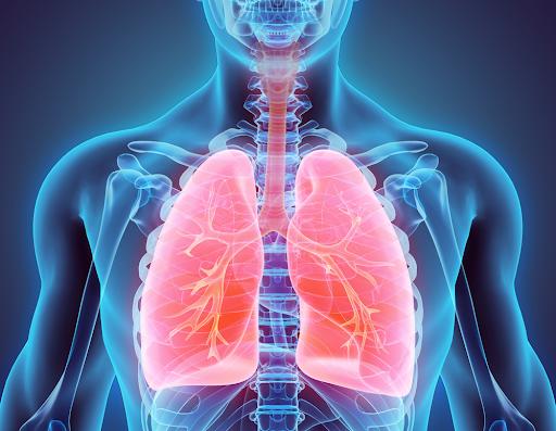 Benefits Of Pranayama (Breath-work)